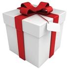 Ценный подарок для целевой аудитории сайта