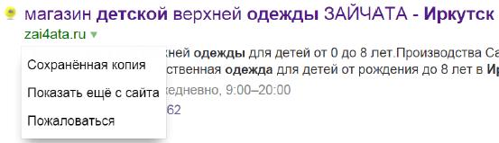 Вывод дополнительной информации в сниппете Яндекса