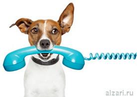 Зачем нужно использовать отслеживание звонков