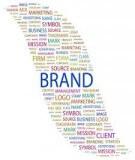 Как поисковики ищут сигналы бренда компании