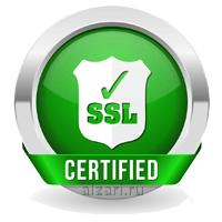 SSL-сертификат для надежного продвижения молодых сайтов в интернете