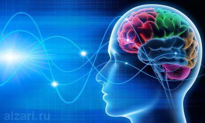 Что такое нейромаркетинг и каковы его особенности