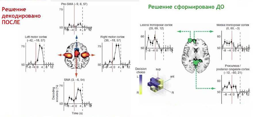 Готовые данные исследования в области нейромаркетинга