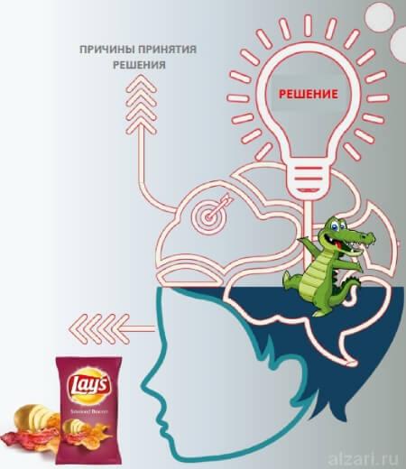 Как в нейромаркетинге мы принимаем решение при покупке товара