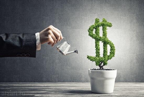 Поливаем дополнительными инвестициями для создания финансового портфеля