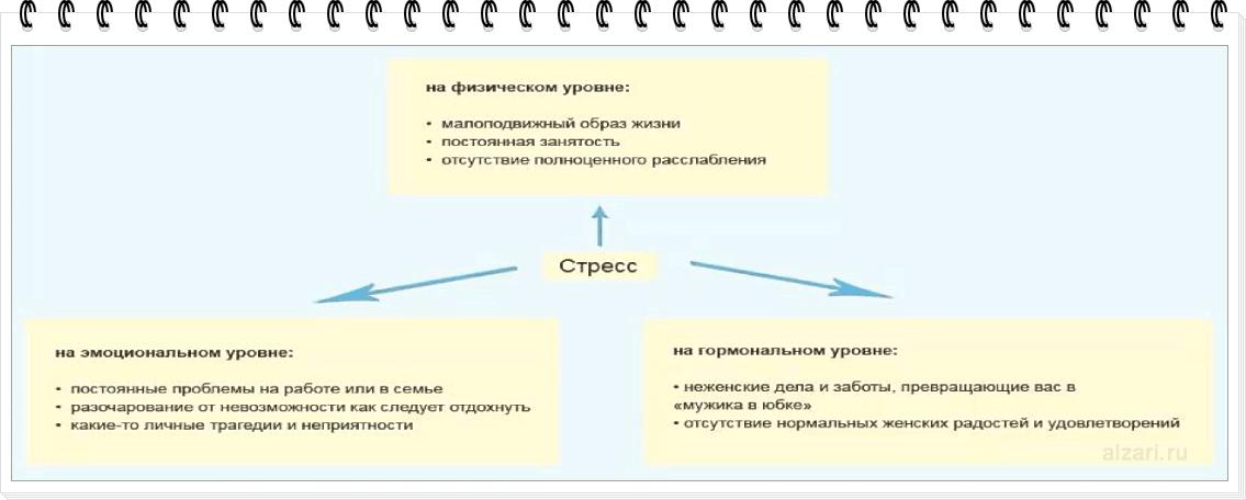 Пример компактного оформления текста в виде схемы в информационной статье сайта